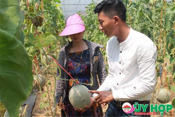MO HINH DUA LUOI 3