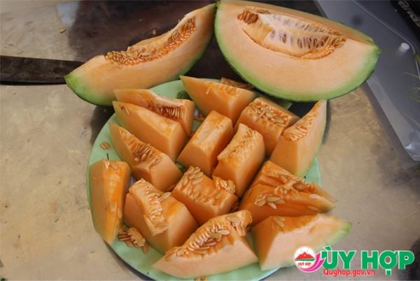 MO HINH DUA LUOI 5