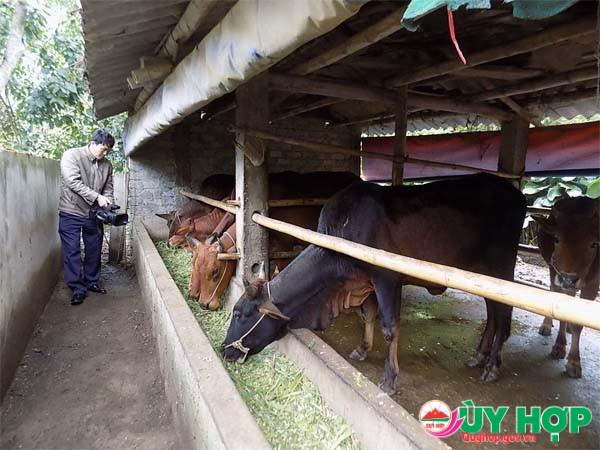 MO HINH ONG LY4